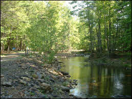 Picture of Douthat State Park.